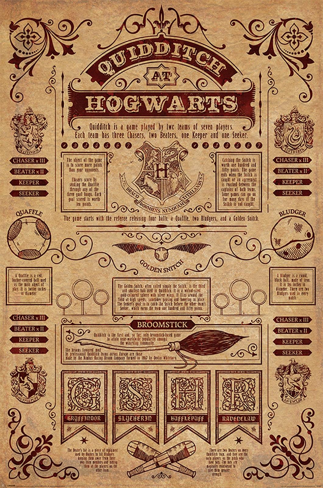 Harry Potter QuidDitch - Filmový plagát 61x91,5 cm