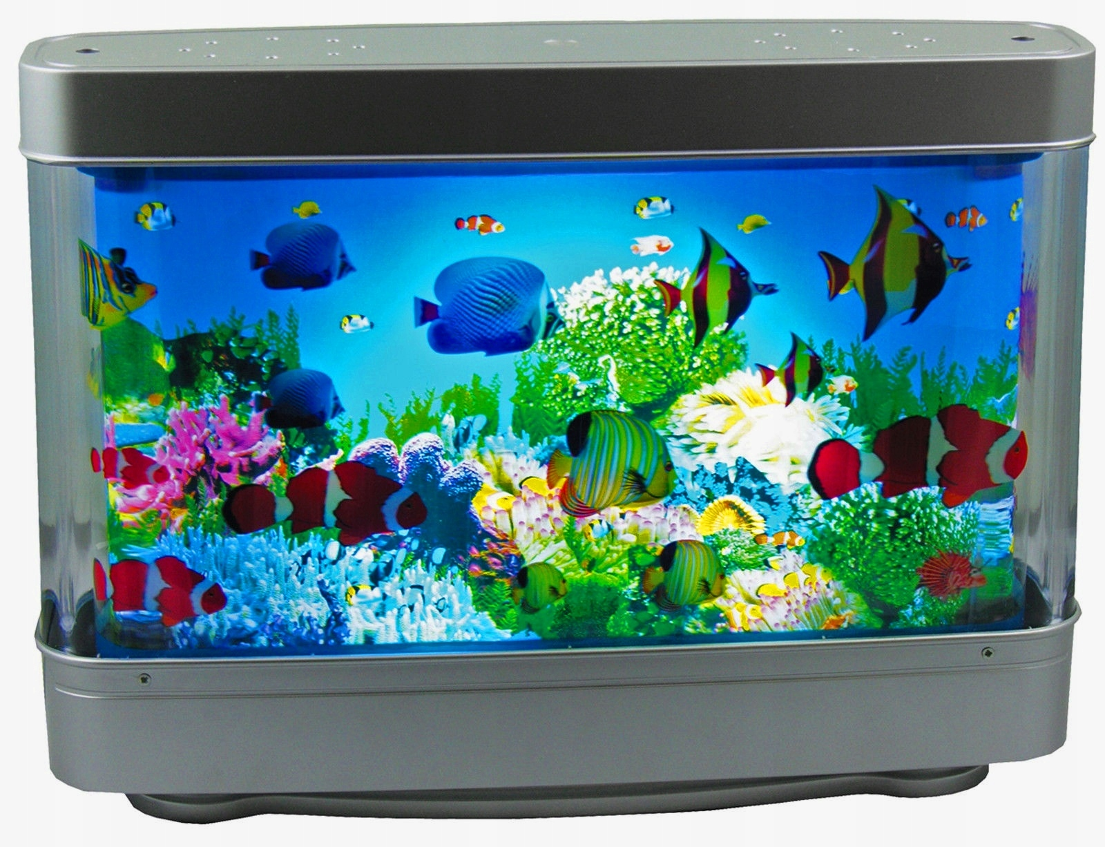 Большой аквариум с рыбками в картинках