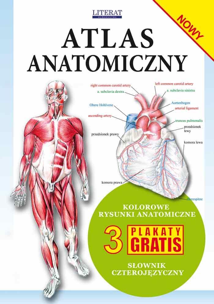 Atlas Anatomiczny Literat 3 Plakaty Anatomia