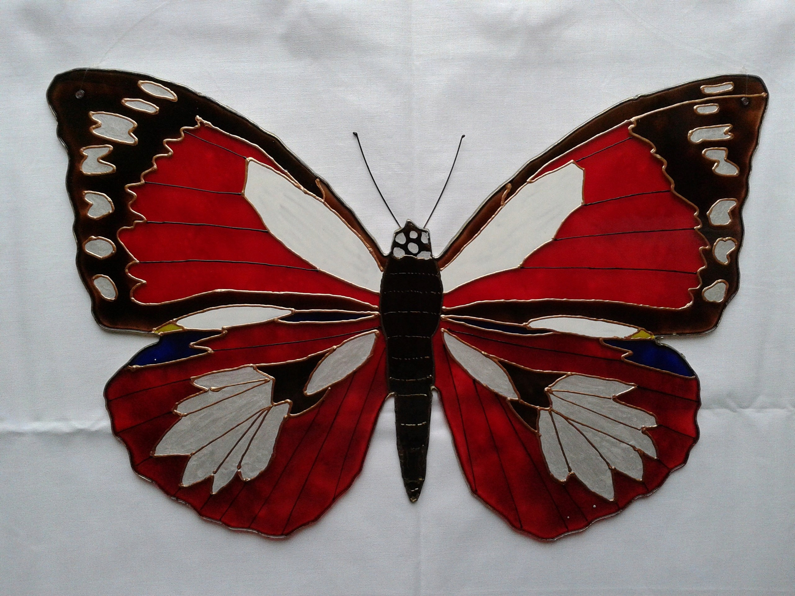 Duże Motyle Dekoracyjne 7538333292 Oficjalne Archiwum