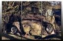 Obraz Auto Zabytek Samochód Wrak Garbus
