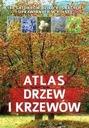 Atlas drzew i krzewów SBM