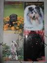 Katalogi PIES - 1994/98 - 4 sztuki