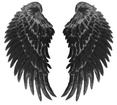 СТРАЗЫ черные Крылья полоса термо высокая 34cm