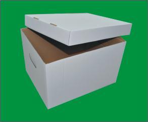 karton z pokrywką biały PRODUCENT 10szt BEZkwasowy