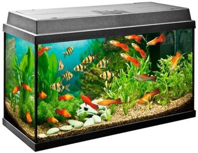 аквариум 30л 40x25x30cm Крышка LED +13 поддавки