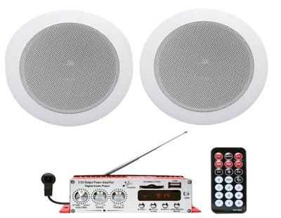 потолке.  комплект ЗВУКОВАЯ для САУНУ Радио MP3