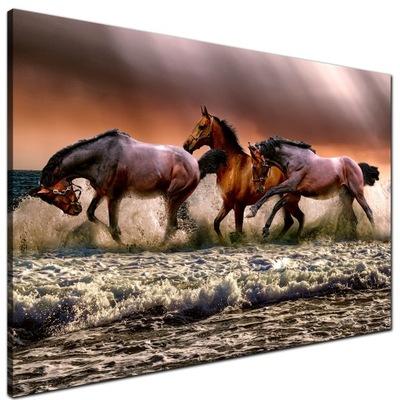 Obraz do Sypialni Konie w morzu