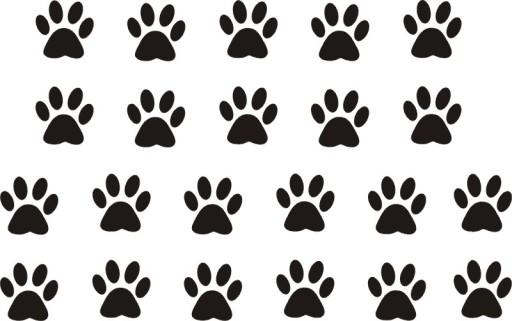 032948273 3x3cm Kocie ślady łapy psa odciski YESS-Naklejki 7105176579 - Allegro.pl
