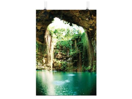 Plakat Dżungla Las Jungle 90x60 Cm 16 Wzorów Błysk