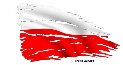 Naklejka Flaga Polska Auto Tatuaż 125072 7349707231 Allegropl